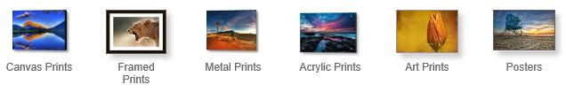 FAA Print Types