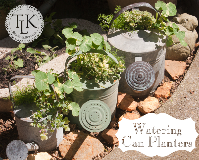 Watering Can Planters on threelittlekittens.com/blog