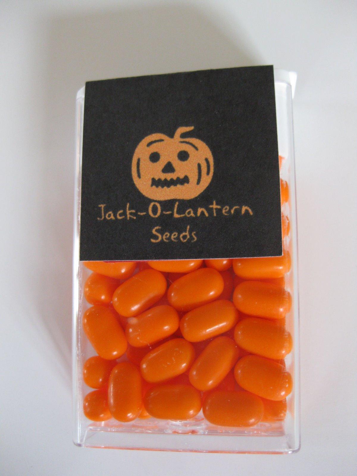 jack o lantern seeds