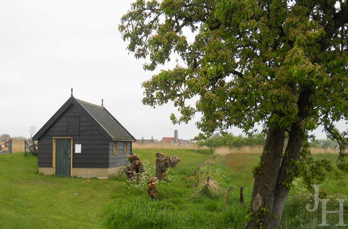 Farm life in Kinderdijk