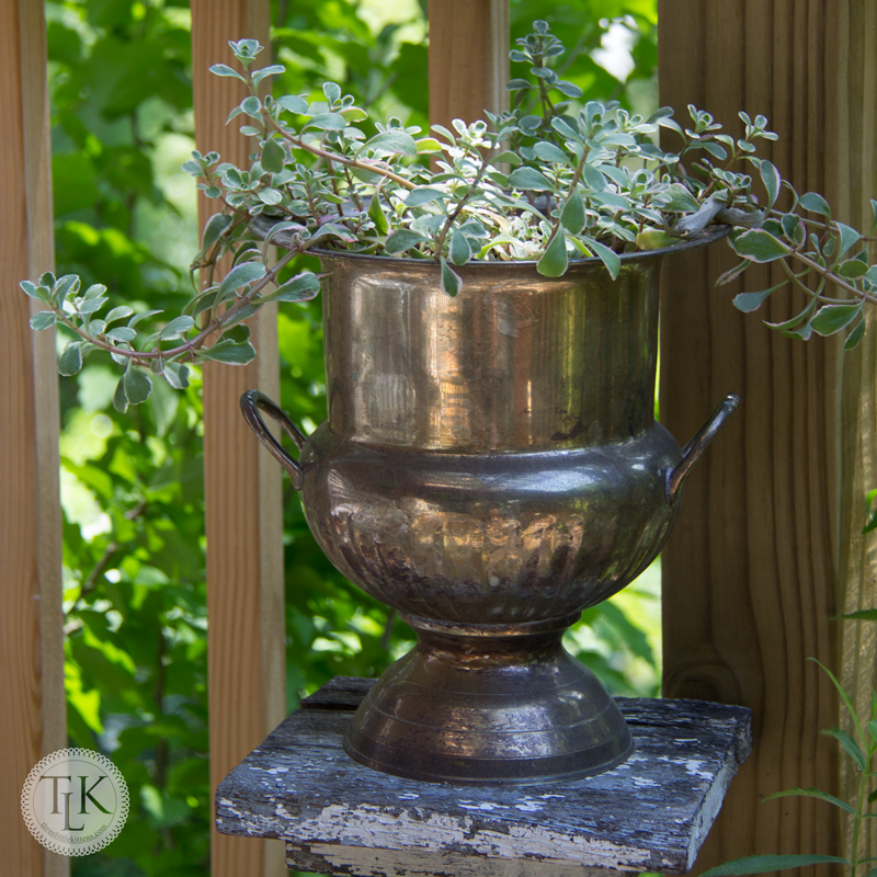 Updated Silver Urn Planter on threelittlekittens.com/blog