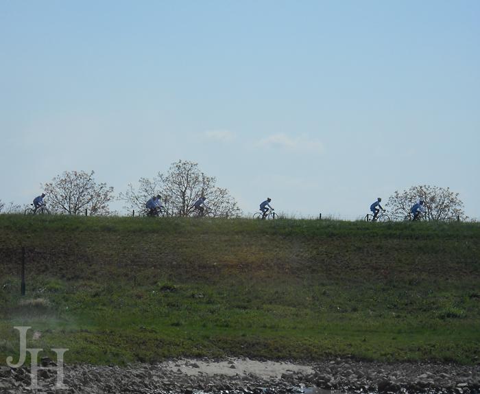 Bicyclists along the Rhine