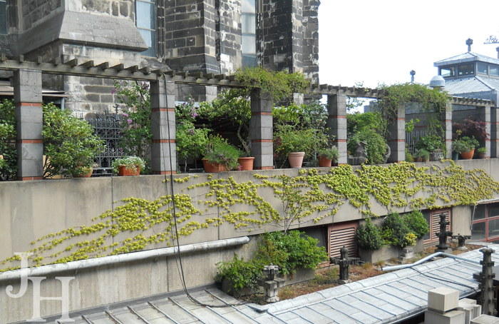 The church garden at the Cathedral in Cologne
