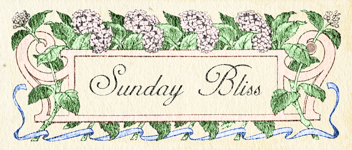 Welcome to Sunday Bliss on threelittlekittens.com/blog