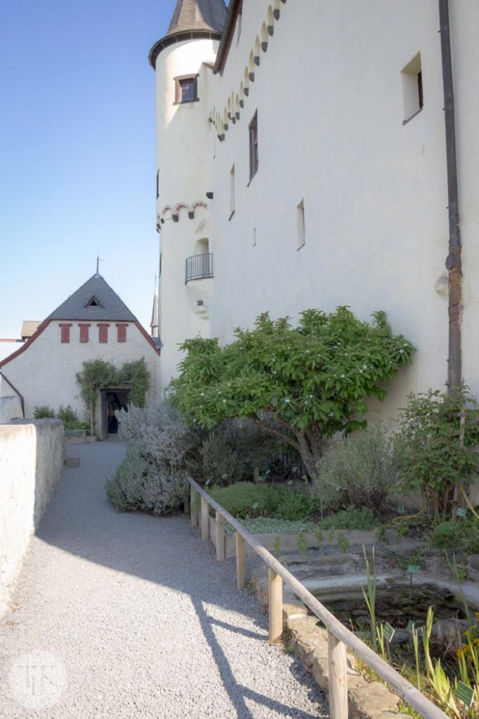 Marksburg-Castle-Herb-Garden-07