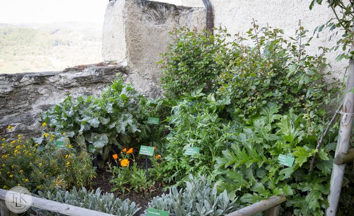 Marksburg-Herb-Garden-01