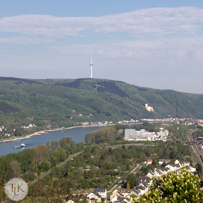 View-from-Marksburg-Castle-02