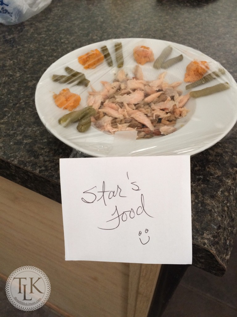 Star's Food Dish