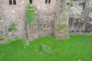 Heidelberger Schloss – The Elisabeth Gate