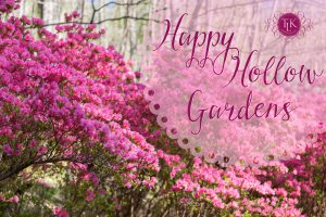 Happy Hollow Gardens Pollinators