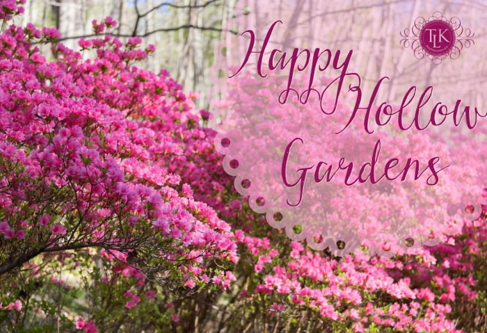 Happy Hollow Gardens Pollinators