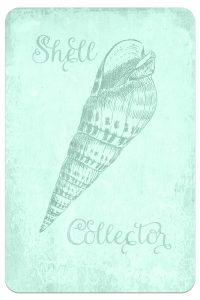 Digital Goodie Day – Sea Glass Seashells – Shell Collector
