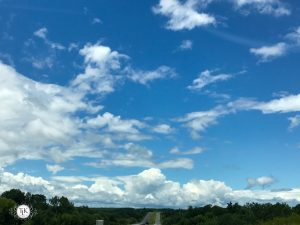 Sunday Bliss – August 6th