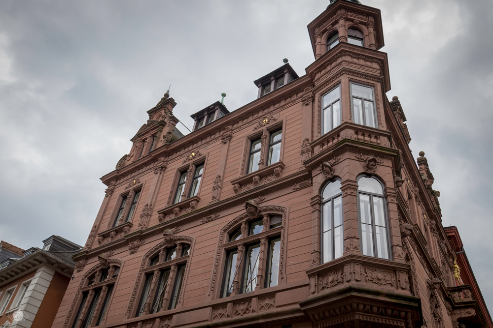 THREE LITTLE KITTENS BLOG | Oberrheinische Bank