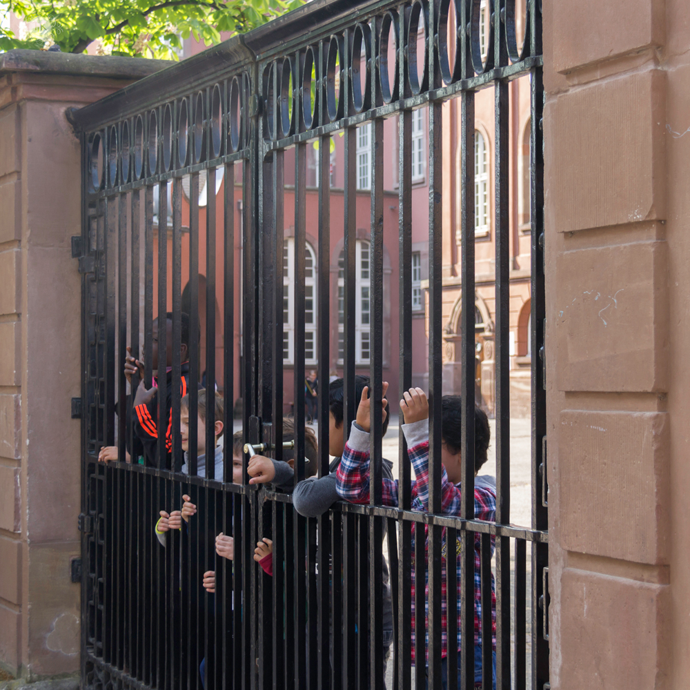 THREE LITTLE KITTENS BLOG | Strasbourg, France | Schoolboys at Saint Thomas Church