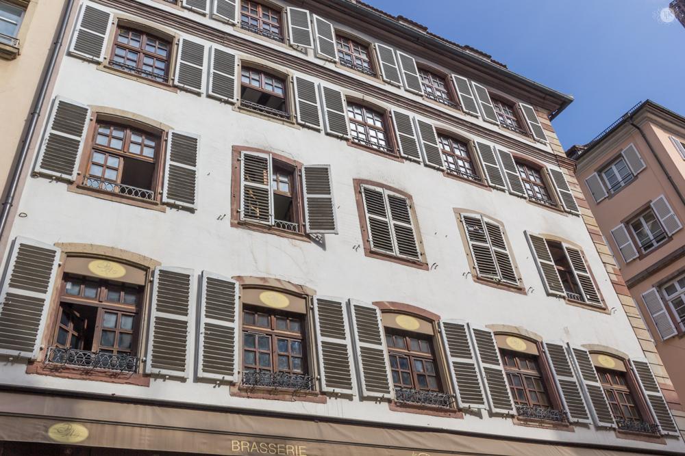 THREE LITTLE KITTENS BLOG | Shutters in Strasbourg, France