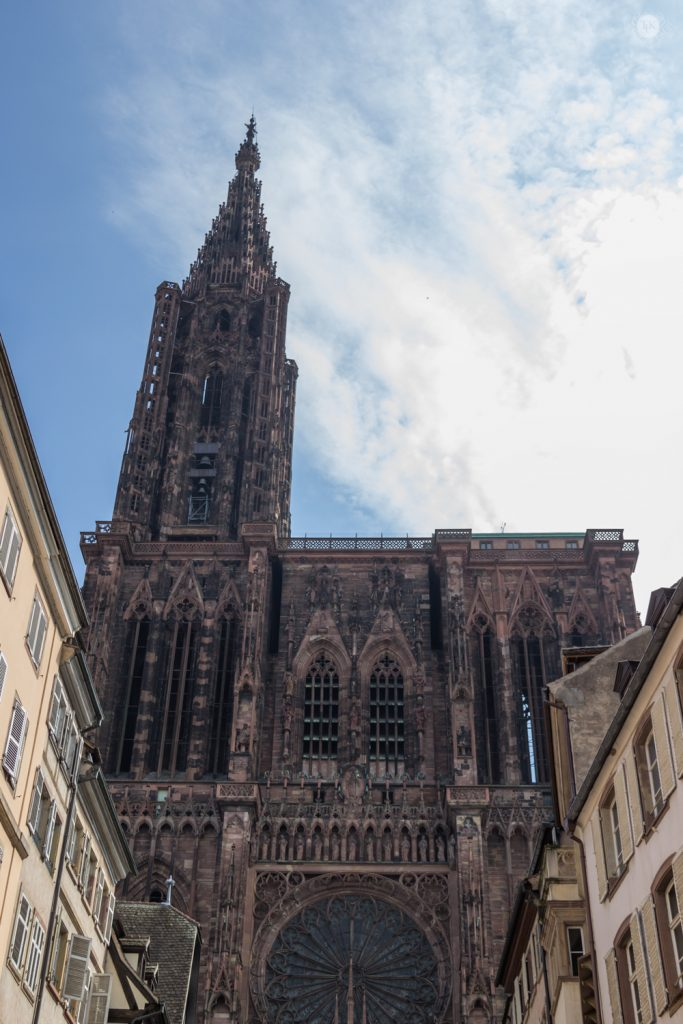 THREE LITTLE KITTENS BLOG | View of the Cathedral from Place Gutenberg