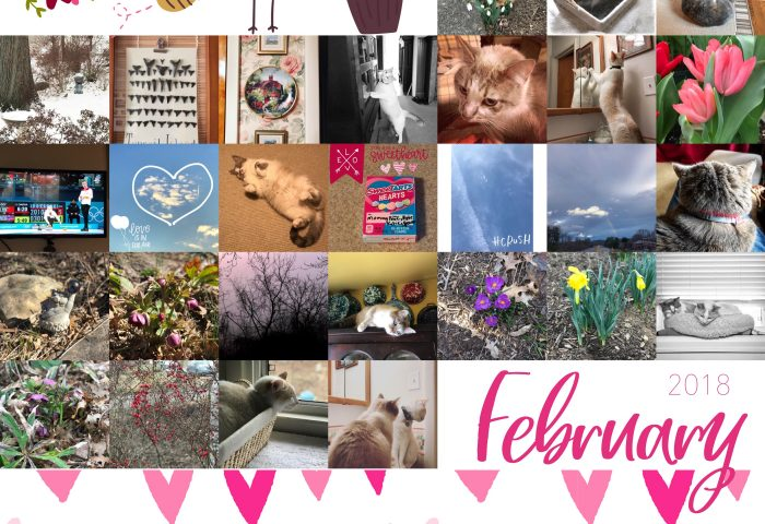 Project Life 365 – February 2018
